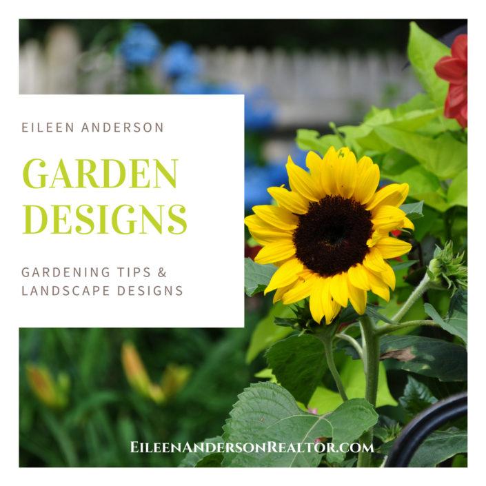 Garden & Landscape Designer