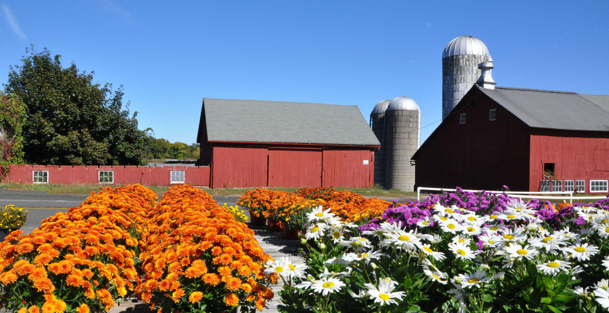 Town of Simsbury, Tulmeadow Farm - Landscape Photography