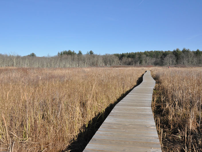 White-Memorial-Boardwalk-Hike-Litchfield-CT