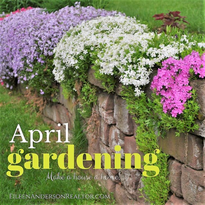 early april gardenig
