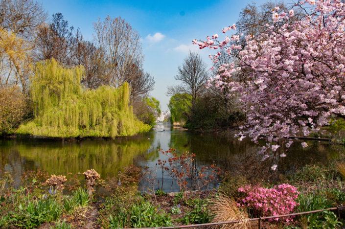 spring gardens england