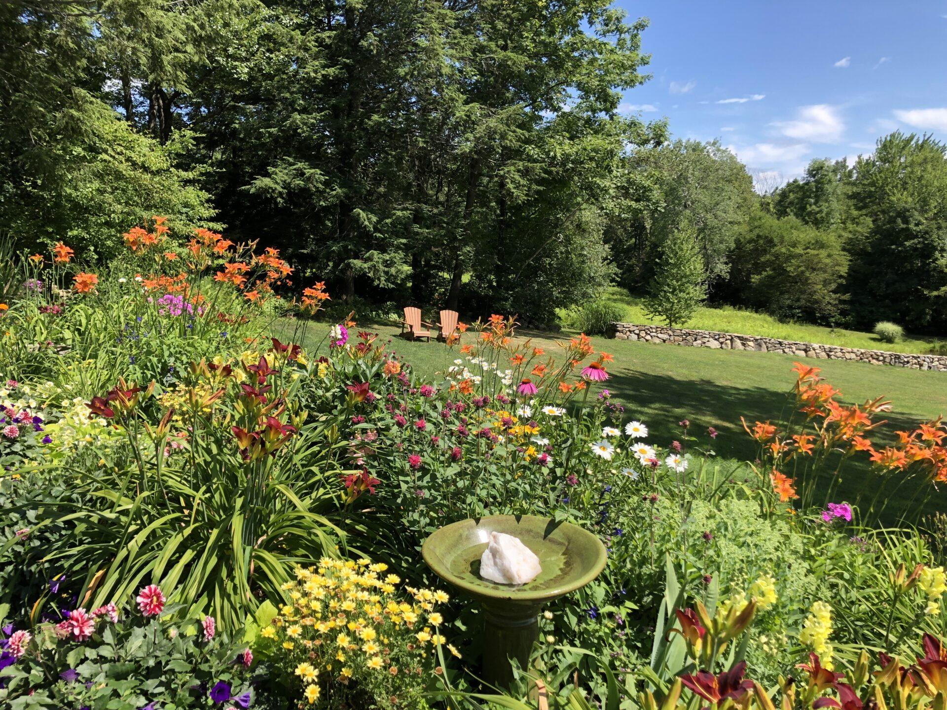 full sun garden design